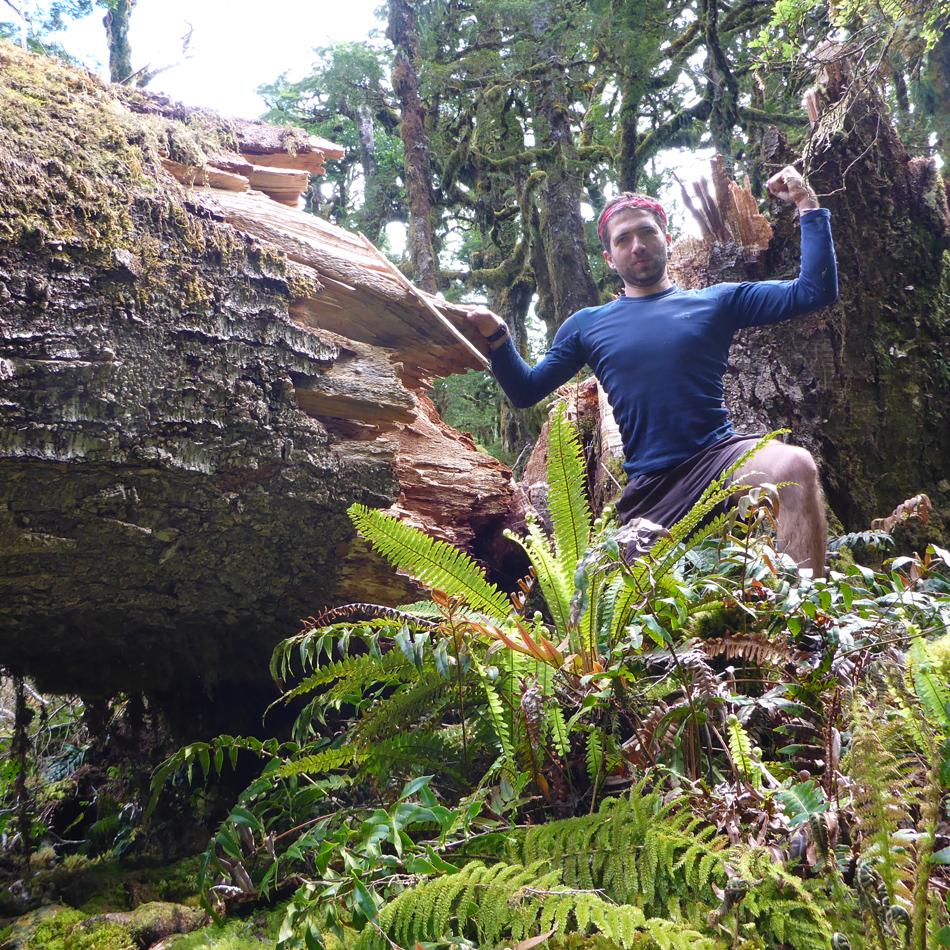 Sennepin Antoine, Nouvelle Zélande, Ici et Ailleurs